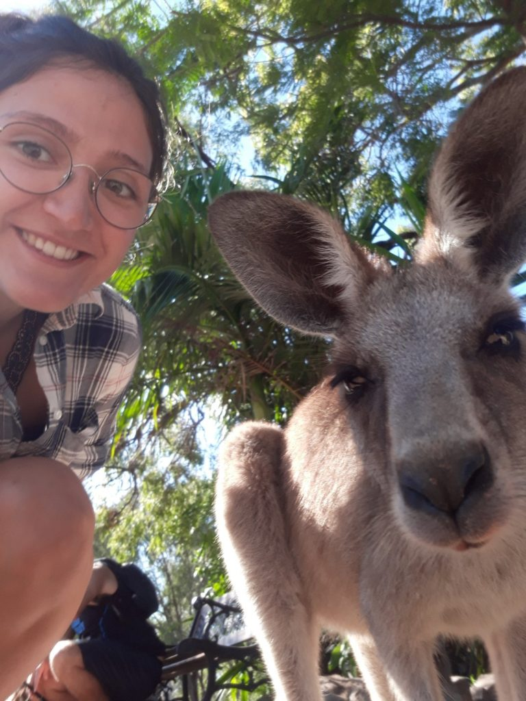 australie-kangourous-melissa
